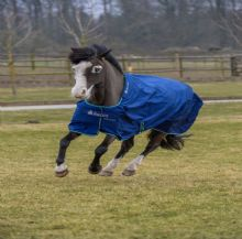 Bucas Smartex Rain/Medium Pony Turnout (For Shetland Ponies and Small Ponies)